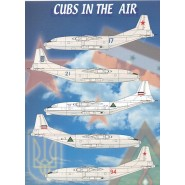 Cubs in the Air
