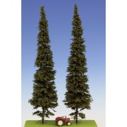 Spruce with short trunk 300 mm (2x)