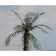 Palm leaves - type I., green