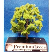 Oak (Carvalho) - Premium Trees (12,7cm)